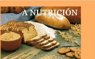 Nutrición  e alimentación
