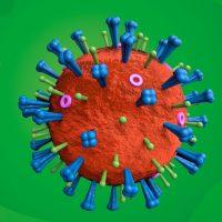 Que son os virus?